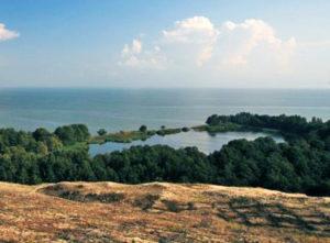 Озеро Лебедь Куршская коса